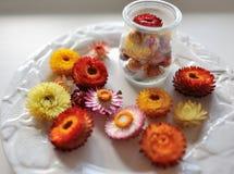 Пестротканые цветки Стоковые Фотографии RF