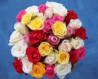 Пестротканый букет роз цветков изолированных на голубом backgroun Стоковые Изображения RF