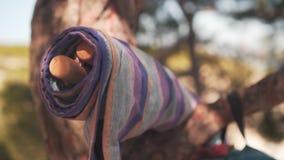 Пестротканый гамак сложенный в крен Гамак лежа на ветви сосны акции видеоматериалы