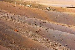 Пестротканый песок в джунглях Стоковое Фото