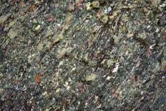 Пестрые пятна краски на каменной поверхности Стоковое фото RF
