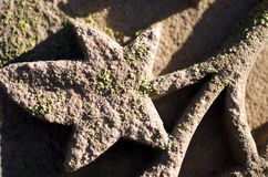 песчаник gravestone Стоковые Фото