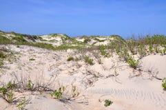 Песчанная дюна в плаще-накидк Гаттерас, North Carolina Стоковые Изображения