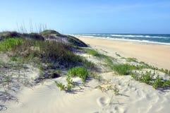 Песчанная дюна в плаще-накидк Гаттерас, North Carolina Стоковые Изображения RF
