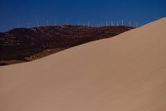 Песчанная дюна и деревья Стоковое фото RF