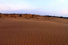 Песчанная дюна на холмах песка вечера в сценарном парке Стоковое Изображение