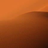 Песчанная дюна Стоковое Фото