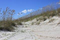 Песчанная дюна на Hilton Head Island Стоковые Изображения RF