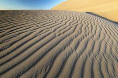 Песчанная дюна пустыни с тенями пульсации стоковое изображение rf