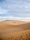 Песчанная дюна пустыни Стоковое фото RF