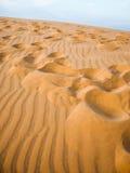Песчанная дюна пустыни Стоковые Фотографии RF