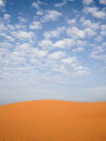 Песчанная дюна пустыни Стоковые Фото