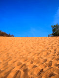 Песчанная дюна пустыни Стоковые Изображения