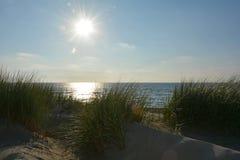 Песчанные дюны в заднем свете с травой дюн на Северном море Стоковое Изображение RF