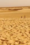 Песчанные дюны в пустыне Сахары Стоковые Изображения RF