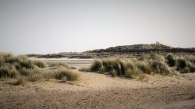 Песчанные дюны на отмелях Дорсете Великобритании стоковые фотографии rf