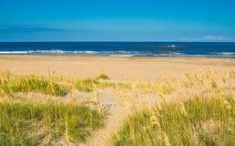 Песчанные дюны на цене океана Стоковое Изображение