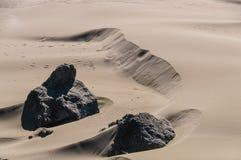 Песчанные дюны около побережья Орегона Стоковая Фотография RF