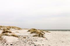 Песчанные дюны острова Борнхольма - Дании Стоковое Изображение RF