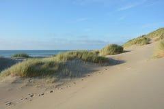 Песчанные дюны с травой пляжа на Северном море, с много зашкурят Стоковое Изображение