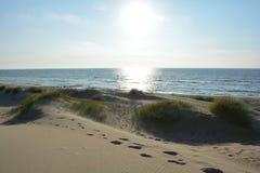 Песчанные дюны с травой пляжа на Северном море с солнцем в вечере Стоковые Изображения RF