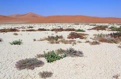 Песчанные дюны Sossusvlei landscape в пустыне Nanib около Sesriem Стоковая Фотография