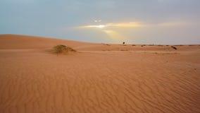 Песчанные дюны в Мавритании Стоковая Фотография RF