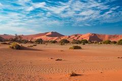 Песчанные дюны в пустыне Namib на зоре, roadtrip в чудесном национальном парке Namib Naukluft, назначение перемещения в Намибии,  Стоковое Изображение