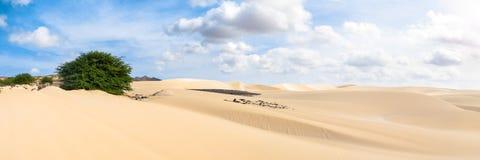 Песчанные дюны в Viana дезертируют - Deserto de Viana в Boavista - накидку Стоковое Фото