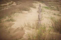 Песчанные дюны грандиозного острова стоковые фотографии rf
