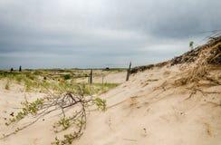 Песчанные дюны Мичигана Стоковая Фотография RF