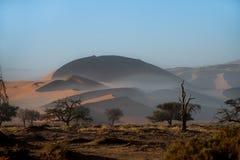Песчанные дюны национального парка Sossusvlei, Намибии Стоковое Изображение RF