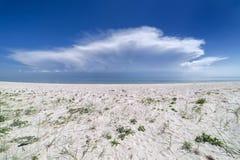 Песчанные дюны на пляже Стоковое фото RF