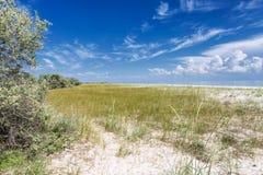 Песчанные дюны на пляже Стоковое Изображение