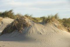 Песчанные дюны на Средиземном море Стоковое Изображение