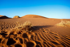 Песчанные дюны на Sossusvlei, Намибии Стоковая Фотография