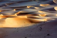 Песчанные дюны на Sunset#1: Углы естественного откоса Стоковое Фото