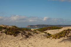 Пляж острова Coronado Стоковая Фотография RF
