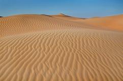 Песчанные дюны пустыни Стоковая Фотография RF