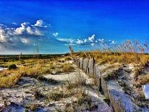 Песчанные дюны пляжа Стоковые Изображения