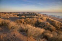 Песчанные дюны пляжа Aberdeenshire Balmedie Стоковое Изображение RF
