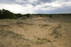 Песчанные дюны Саскачевана Стоковая Фотография RF