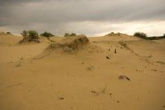 Песчанные дюны Саскачевана Стоковое Изображение RF