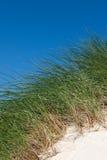 Песчанные дюны с высокорослой травой и голубым небом, пляжем Luskentyre, островом Херриса, Шотландии Стоковые Фотографии RF
