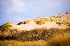 Песчанные дюны Стоковое Изображение