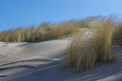 Песчанные дюны II Стоковые Фотографии RF