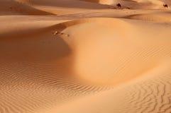 Песчанные дюны Liwa Стоковые Изображения