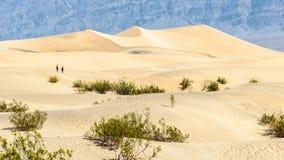 Песчанные дюны Wells Stovepipe, национальный парк Death Valley, Калифорния, США Стоковые Фотографии RF