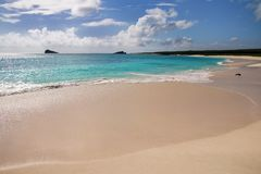 Песчаный пляж на заливе Gardner, острове Espanola, соотечественнике Галапагос стоковые фотографии rf