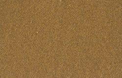 Песчаный пляж Стоковые Фотографии RF
